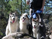 Netooka, Roy and Kylie, mountain hiking
